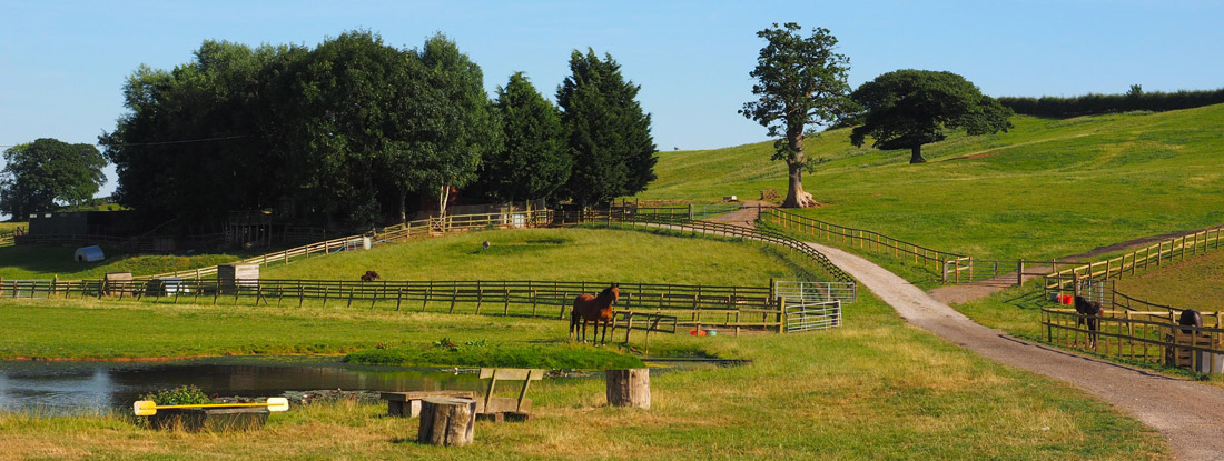 Fresh Fields Equine Retirement